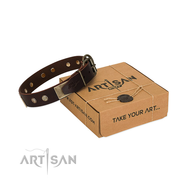 Rust-proof decorations on dog collar for stylish walking