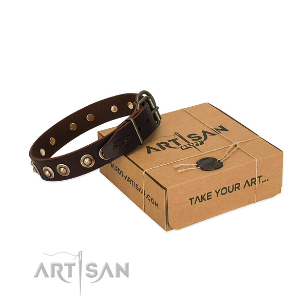 Rust resistant adornments on full grain natural leather dog collar for your canine