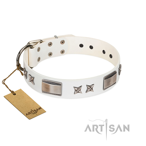 Stylish dog collar of leather