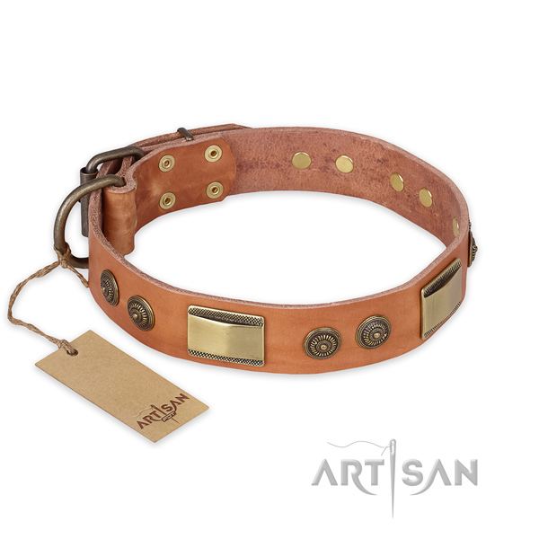 Extraordinary full grain leather dog collar for daily walking