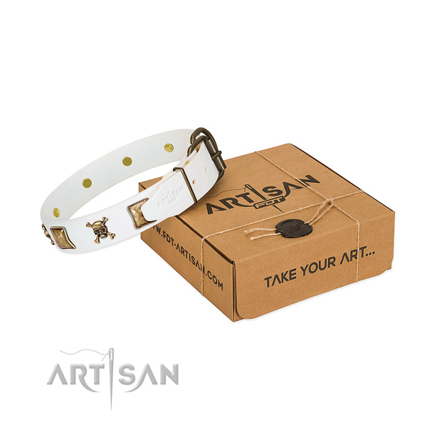 Awesome natural leather dog collar with rust-proof adornments