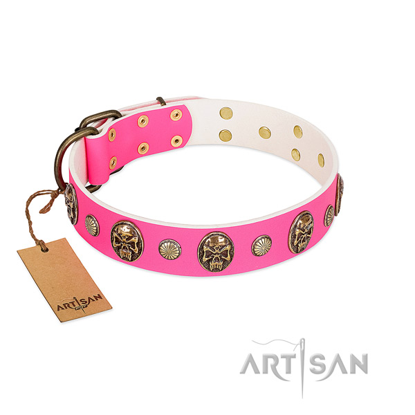 Corrosion proof embellishments on full grain natural leather dog collar for your pet