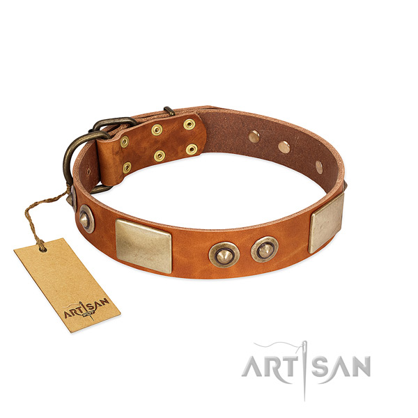 Easy to adjust full grain genuine leather dog collar for everyday walking your canine