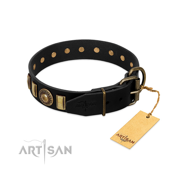Best quality genuine leather dog collar with embellishments