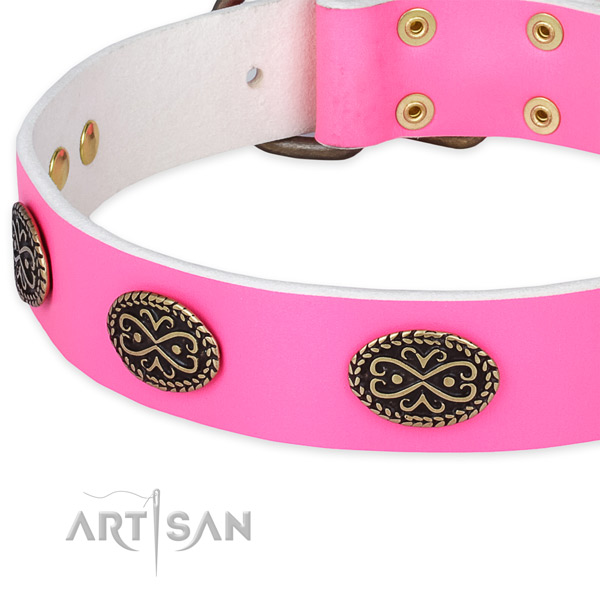 Genuine leather dog collar with adornments for stylish walking