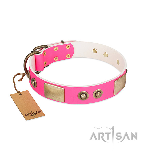 Corrosion resistant studs on full grain genuine leather dog collar for your dog