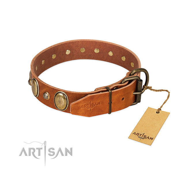 Fine quality natural leather dog collar with strong fittings