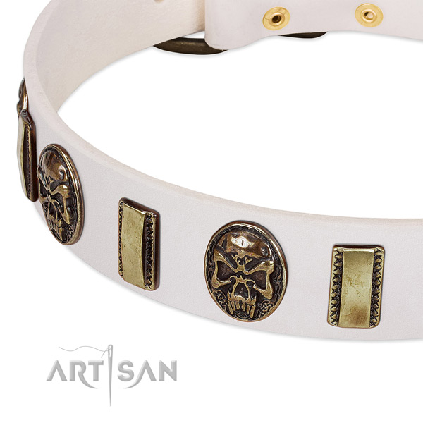 Corrosion proof embellishments on leather dog collar for your canine