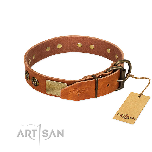 Corrosion resistant D-ring on full grain genuine leather collar for stylish walking your dog