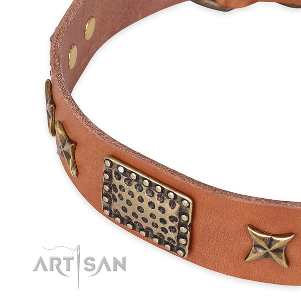 Full grain genuine leather collar with strong fittings for your beautiful dog