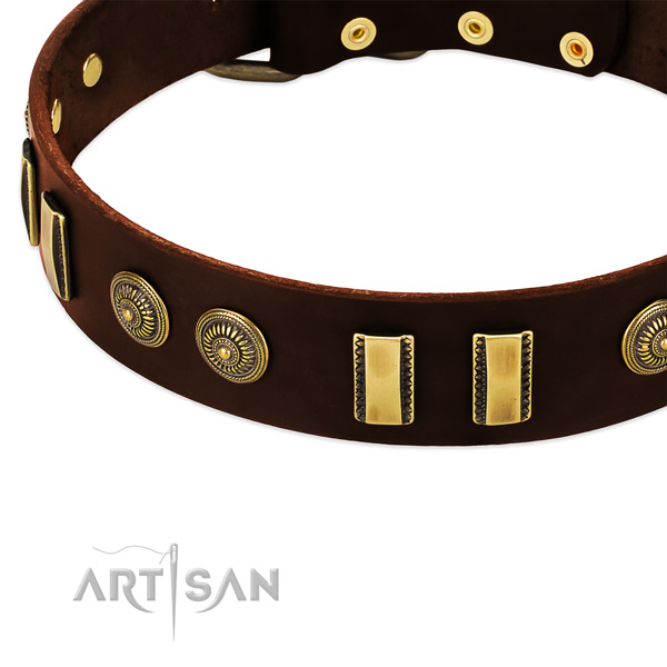 Corrosion resistant embellishments on natural leather dog collar for your dog