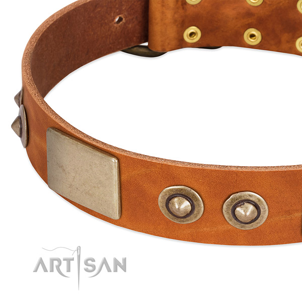 Rust resistant decorations on full grain leather dog collar for your dog
