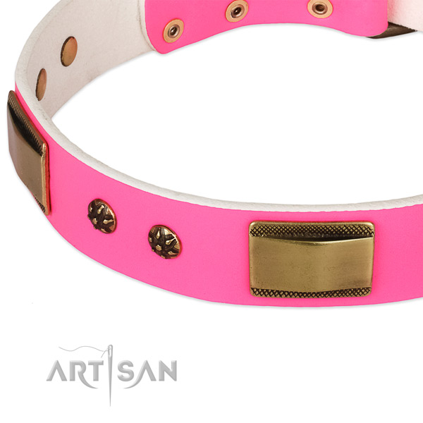 Reliable fittings on full grain leather dog collar for your canine