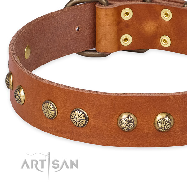 Full grain genuine leather collar with corrosion proof hardware for your beautiful canine