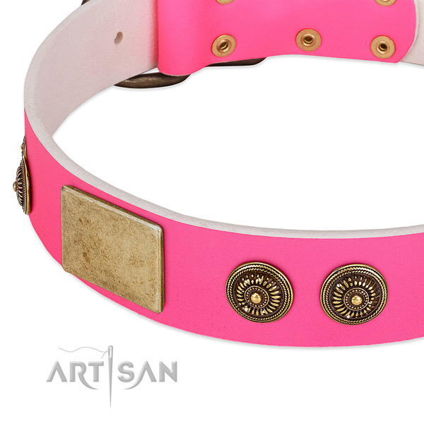 Stylish dog collar made for your handsome dog