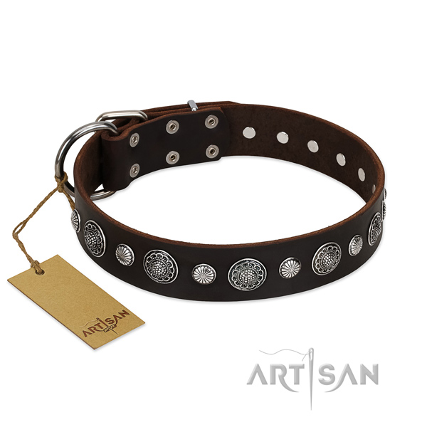 Strong full grain genuine leather dog collar with remarkable adornments