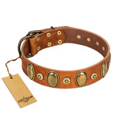 """Crystal Sand"" FDT Artisan Tan Leather Boxer Collar with Vintage Looking Oval and Round Studs"