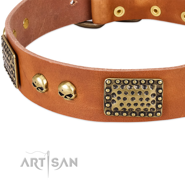 Strong traditional buckle on full grain genuine leather dog collar for your pet