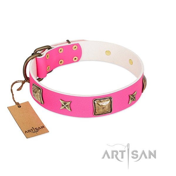 Leather dog collar of soft material with significant embellishments