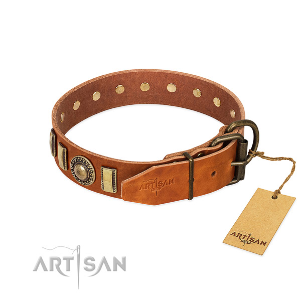 Easy to adjust full grain genuine leather dog collar with rust-proof fittings