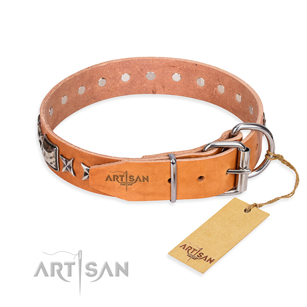 Quality adorned dog collar of full grain leather
