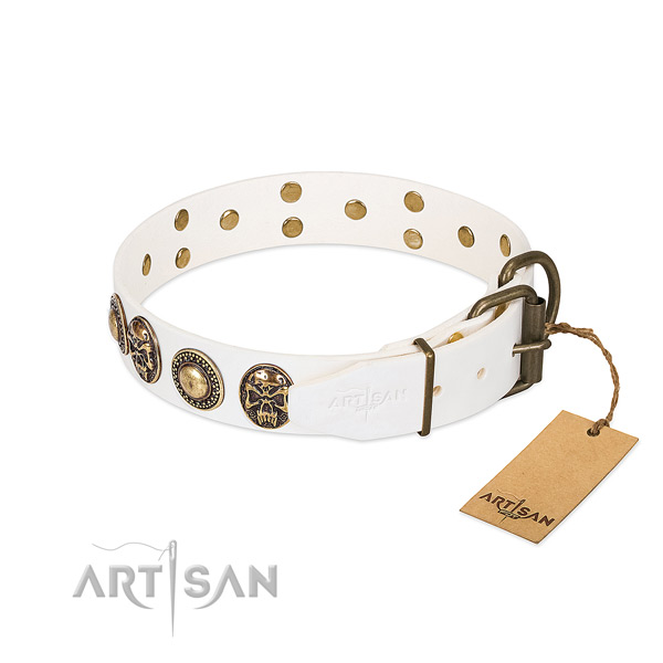 Strong buckle on daily use dog collar
