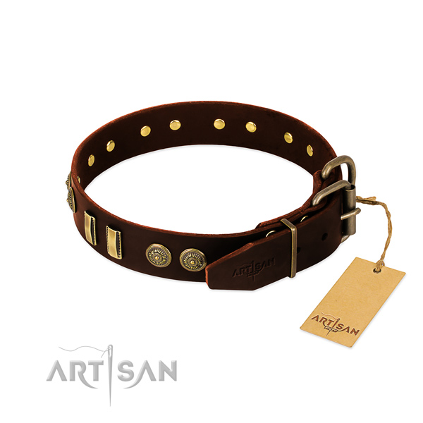 Rust resistant studs on natural leather dog collar for your canine