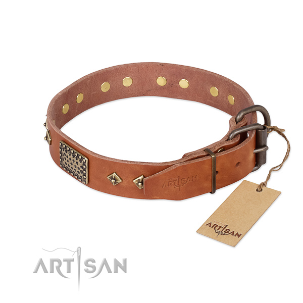 Leather dog collar with strong hardware and studs