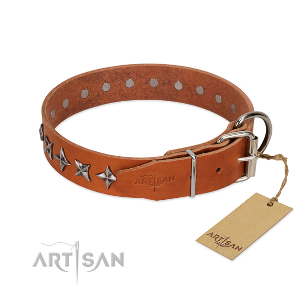 Comfortable wearing adorned dog collar of quality natural leather