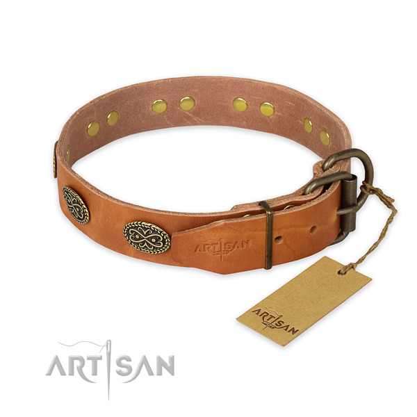 Durable traditional buckle on leather collar for daily walking your pet