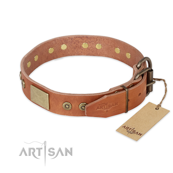 Rust resistant traditional buckle on full grain genuine leather collar for walking your canine