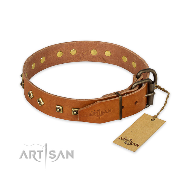 Rust resistant D-ring on natural leather collar for basic training your canine