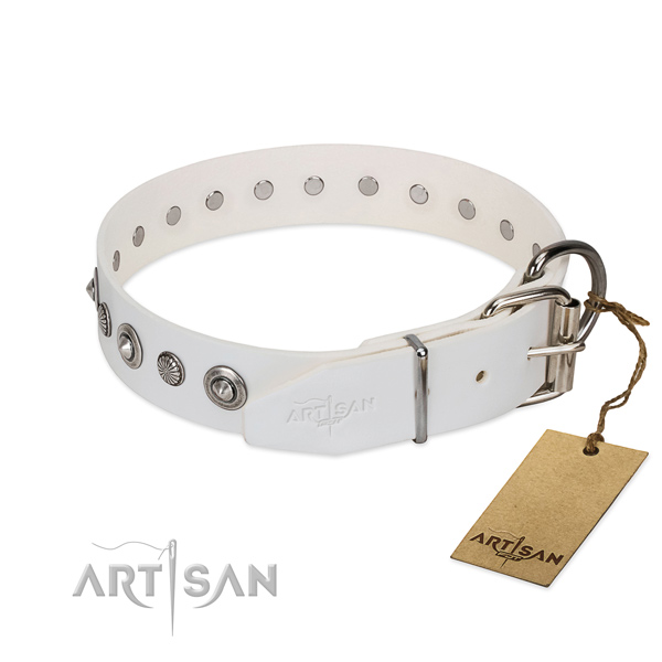 Finest quality full grain natural leather dog collar with stylish adornments