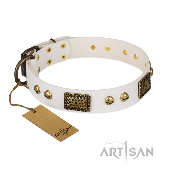 Durable decorations on basic training dog collar