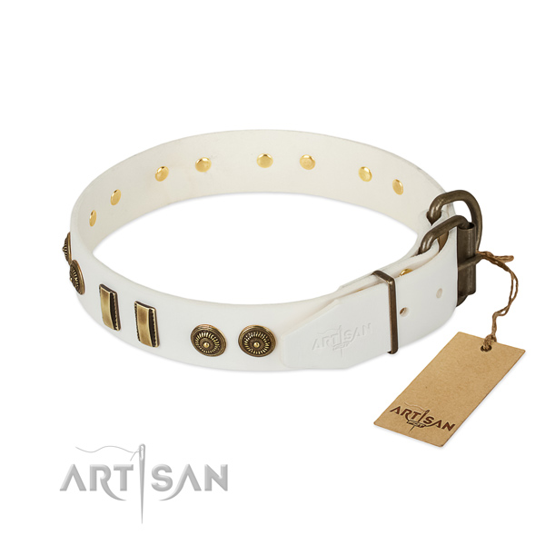 Rust resistant decorations on full grain leather dog collar for your pet