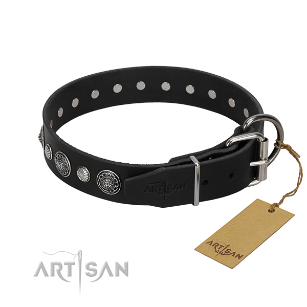 Top quality full grain leather dog collar with unusual adornments