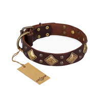 """Golden Square"" FDT Artisan Brown Leather Boxer Collar with Large Squares"