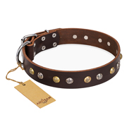 """Golden""n""Silver Luxury"" FDT Artisan Leather Boxer Collar with Engraved Studs"