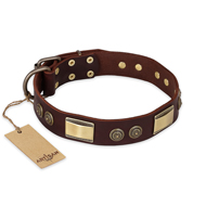 """Golden Stones"" FDT Artisan Brown Leather Boxer Collar with Old Bronze Look Plates and Circles"