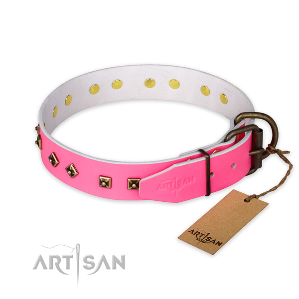 Reliable traditional buckle on natural leather collar for walking your four-legged friend