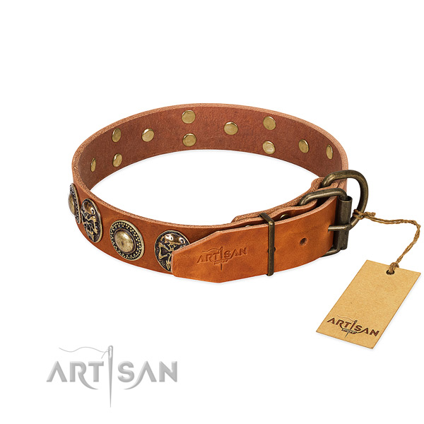Strong adornments on comfortable wearing dog collar