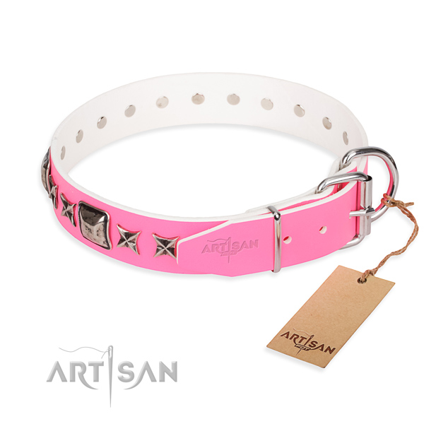 Quality decorated dog collar of leather
