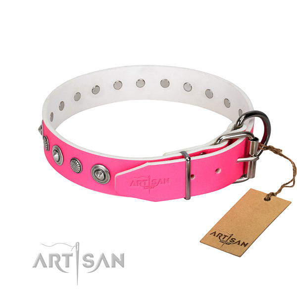 Finest quality leather dog collar with stunning adornments