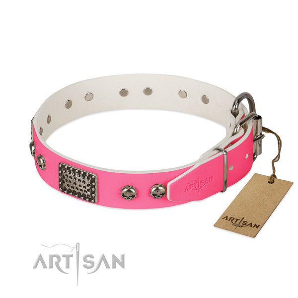 Reliable decorations on daily walking dog collar