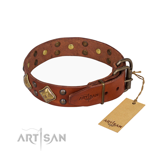 Full grain natural leather dog collar with extraordinary corrosion resistant studs