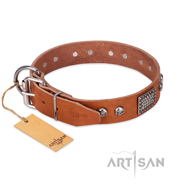 Corrosion resistant studs on daily walking dog collar