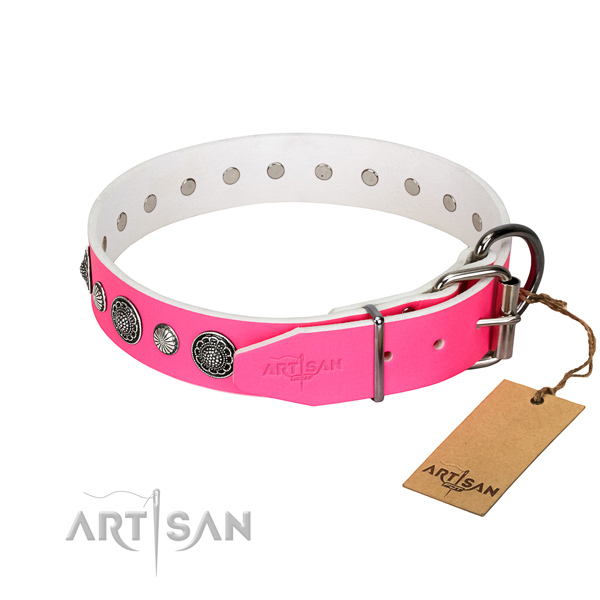 Quality natural leather dog collar with rust resistant D-ring