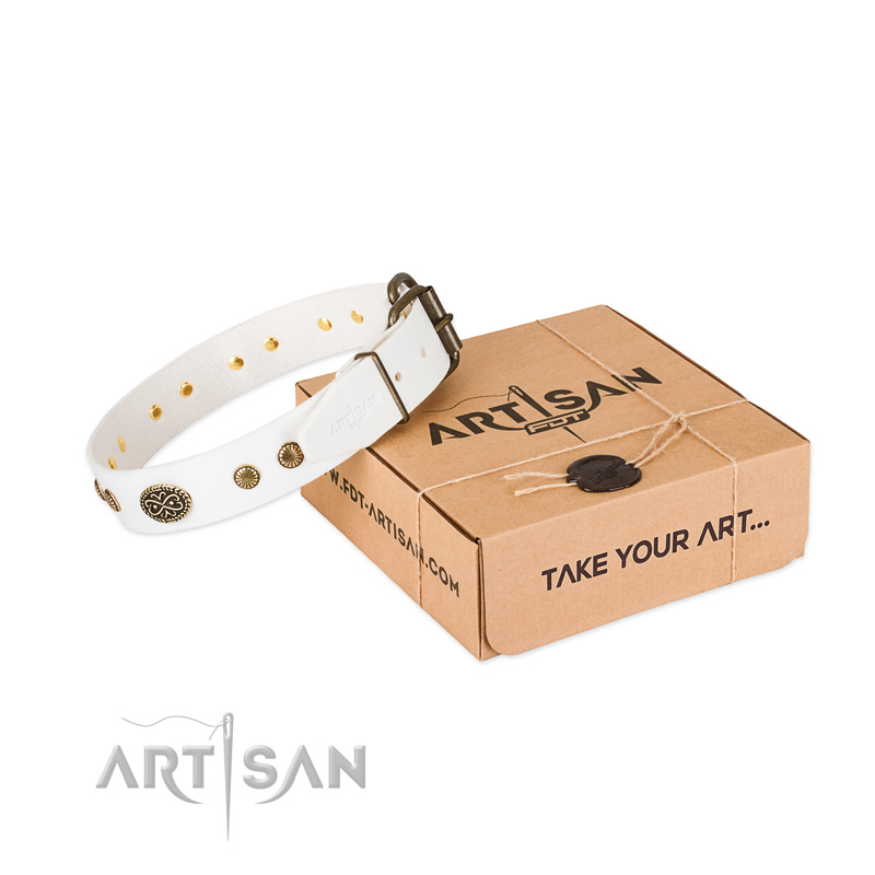 Corrosion proof hardware on natural leather dog collar for your four-legged friend