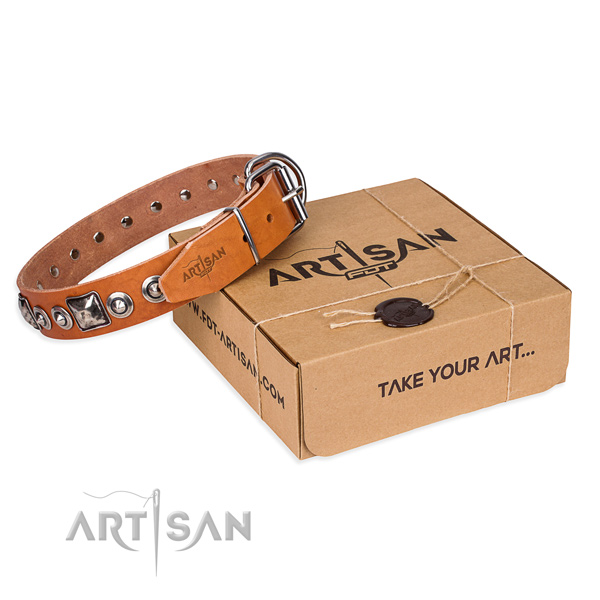 Full grain genuine leather dog collar made of soft to touch material with reliable traditional buckle