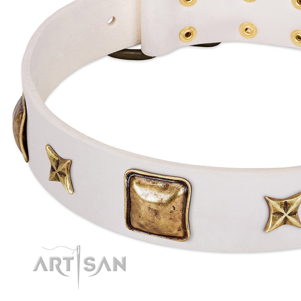 Reliable studs on leather dog collar for your doggie